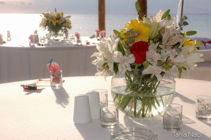 about us cozumel weddings